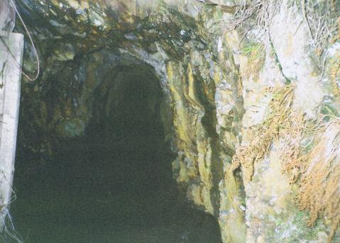 clogau gold mine